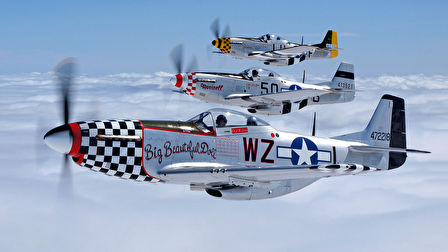 A Mustang P-51