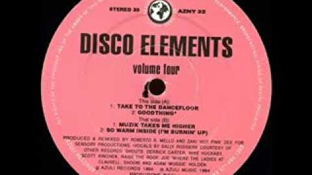 Disco Elements - B1 Muzik Takes Me Higher (Volume Four EP)